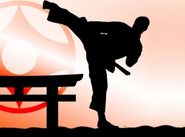 10 Things You Did Not Know About Martial Arts 9