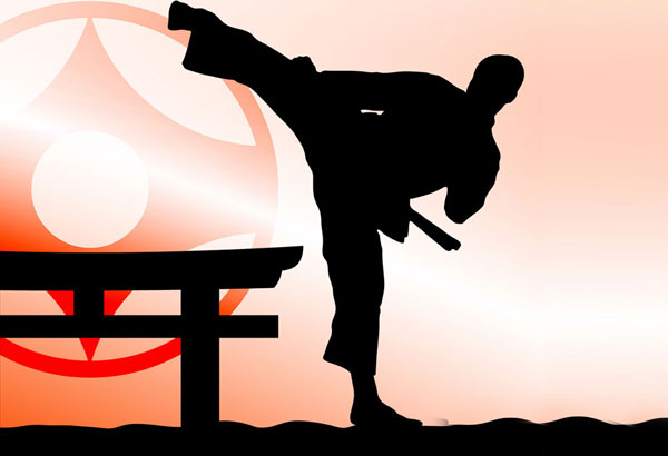 10 Things You Did Not Know About Martial Arts 1